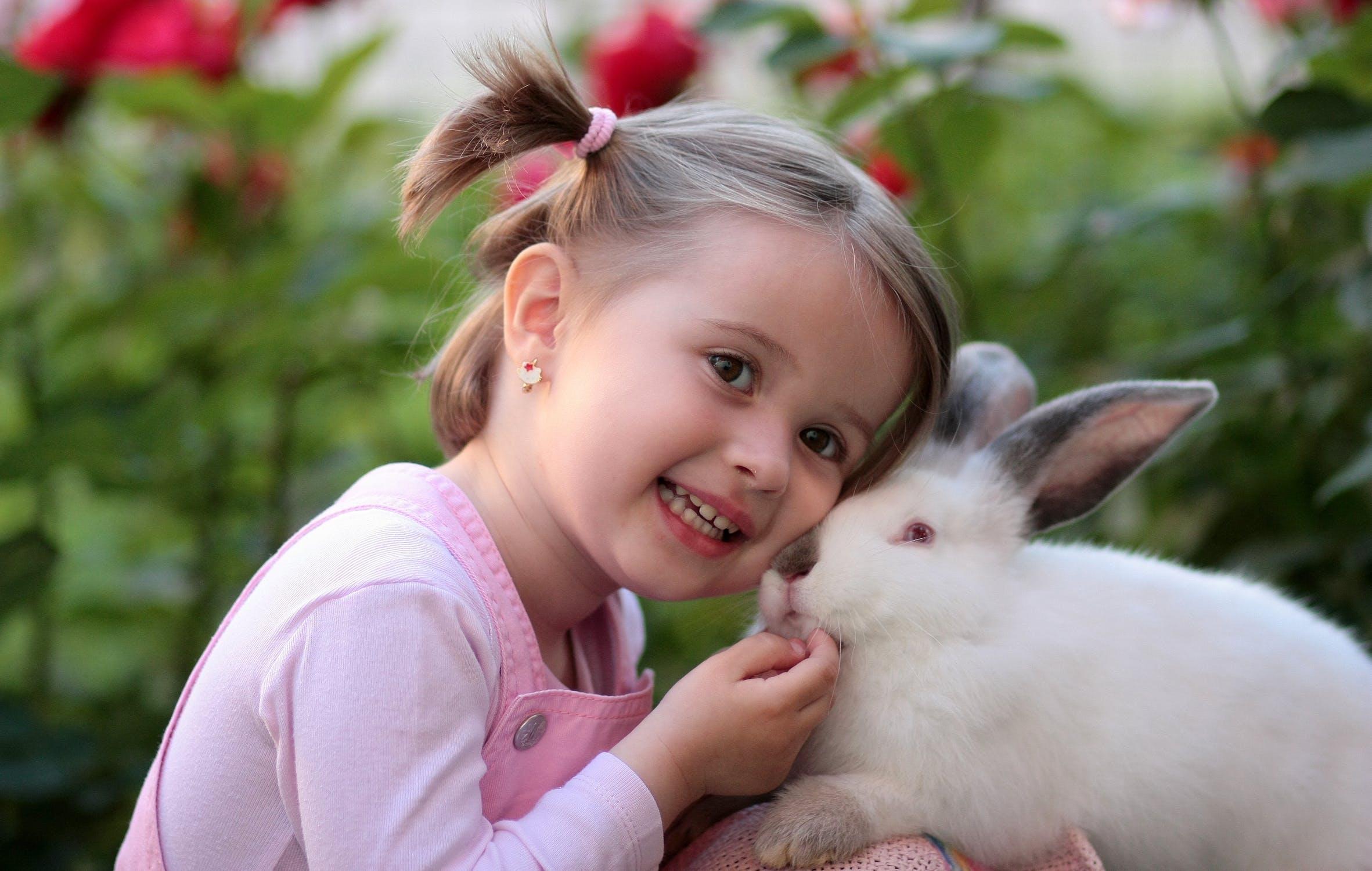41 Koleksi Gambar Binatang Untuk Belajar Anak Kecil Gratis Terbaik